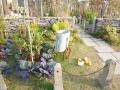 庭の雑貨2
