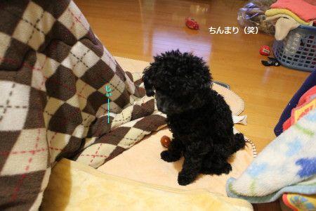 IMG_7839_1zzzzzzぃいいい123459