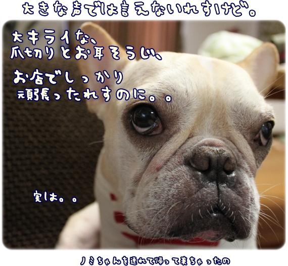 IMG_0212.jpg