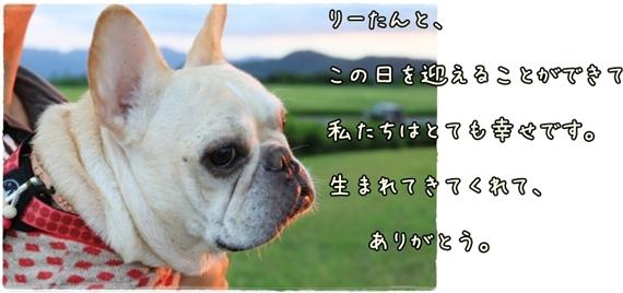 IMG_6370-1.jpg