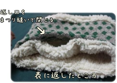 IMG_9384-crop.jpg