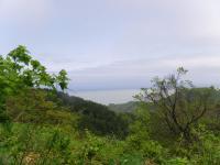 弥彦山周辺11