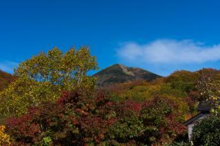 東北は紅葉の季節になりました