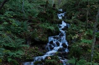 早朝の滝は癒やされます