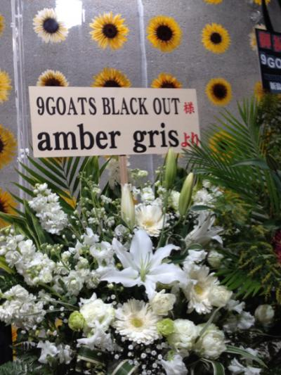 2013 02 27 9GOATS BLACK OUT Silence amber gris花