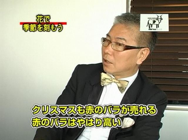 20120730hi風花02