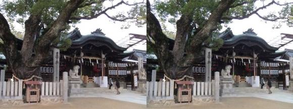 石切神社③(平行法)