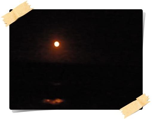 海とお月様