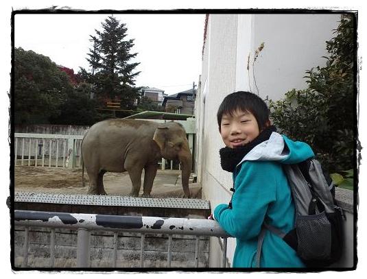 動物園・ぞ~さん
