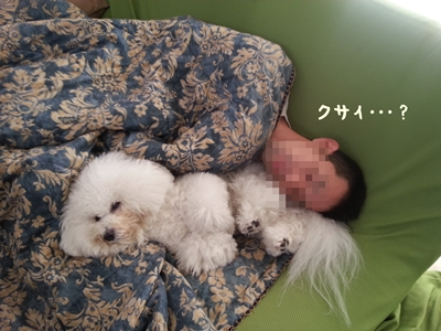 20121014_112212.jpg