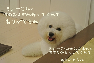 DSC_8311.jpg