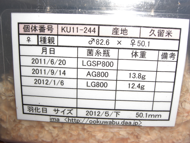 13KR-501.jpg