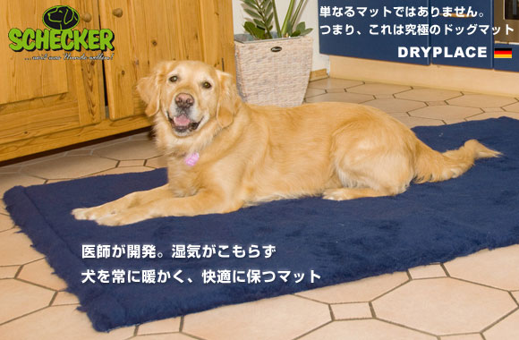 dryplace_01.jpg