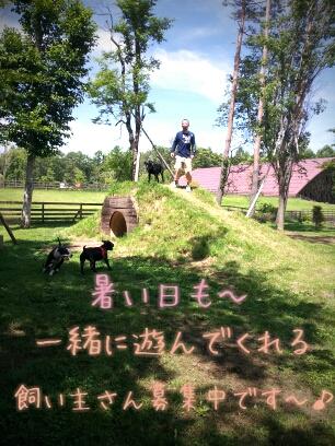 fc2blog_201209111422411bc.jpg