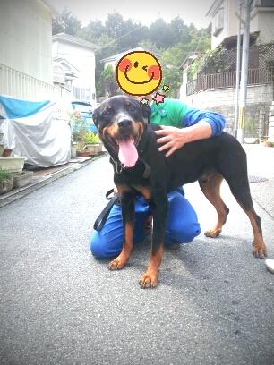 fc2blog_20120922130012fa9.jpg