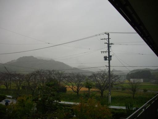 雨が降る1