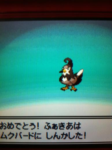 moblog_8ac0a5f6.jpg