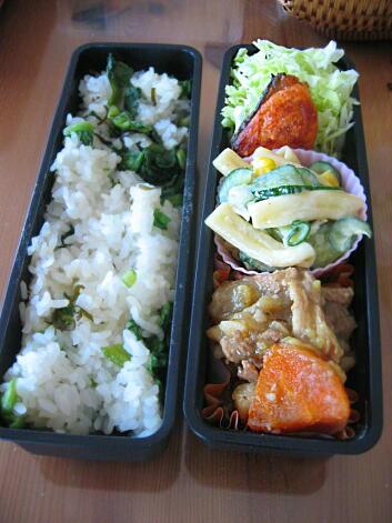 鮭弁 夫弁当