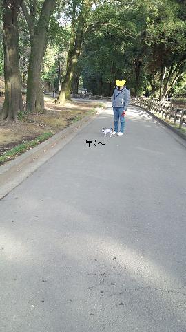 DSC_0695③