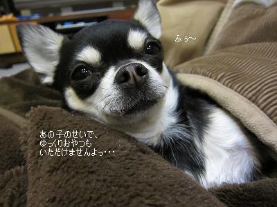 IMG_6108.jpg