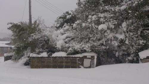 2012年豪雪