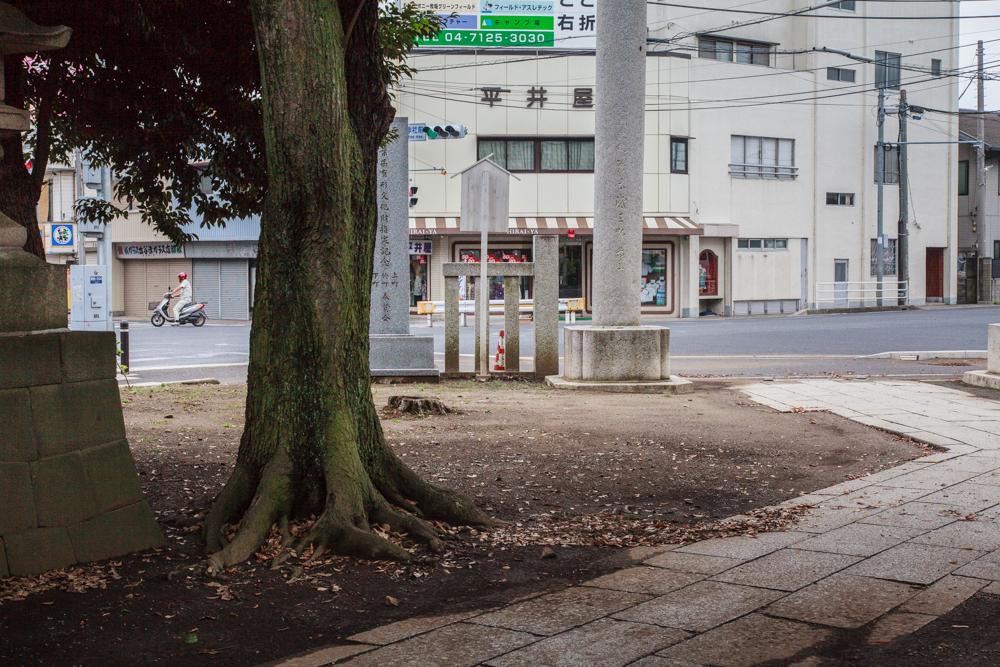 130822野田市-2