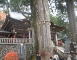 三峰神社7