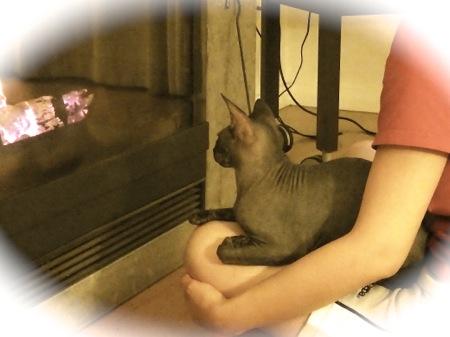heater2013-3