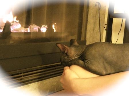 heater2013-4