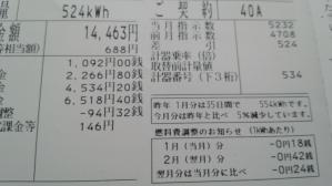 2013_0121_122549-DSC_0648.jpg