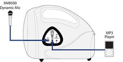 EPA40_fig1_XL.jpg