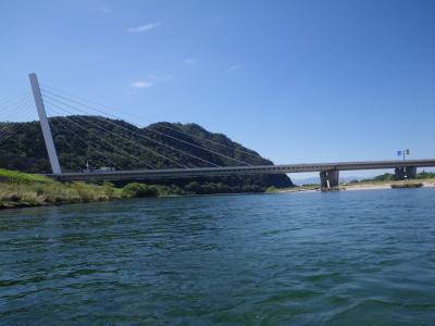 鵜飼い大橋と岐阜城