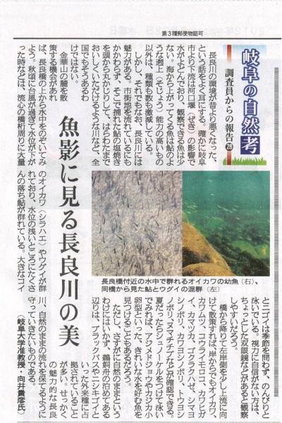 岐阜新聞記事 向井先生の報告