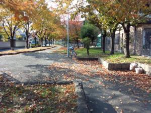 DSC_0606_convert_20121120120142.jpg