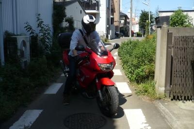 P1010079z.jpg