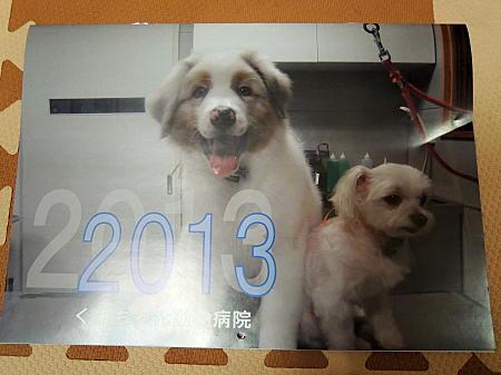 動物病院カレンダー表紙