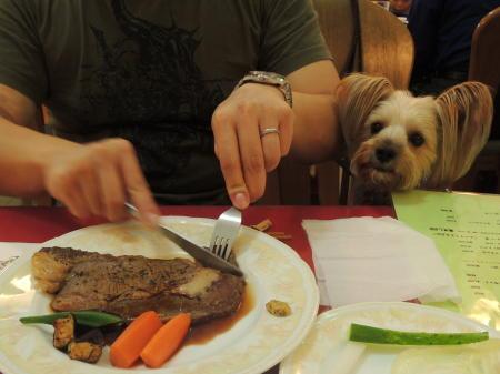 まりおも肉にありつきたい