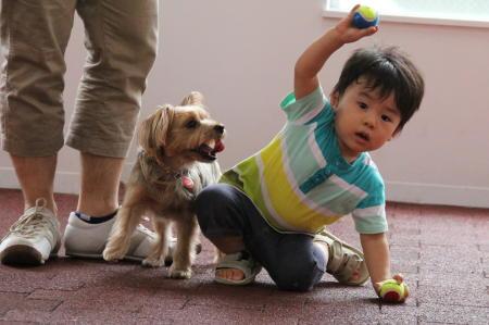 「ボール、なげるよー」