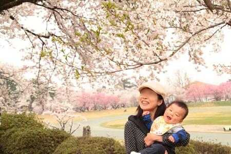 桜いっぱい!村松公園にて♪