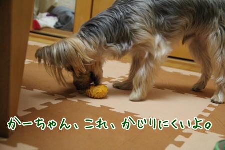 まりお「かーちゃん、これ食べにくいよ」