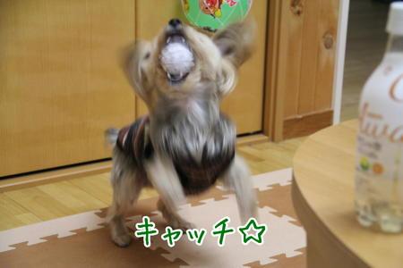 まりおキャッチ☆