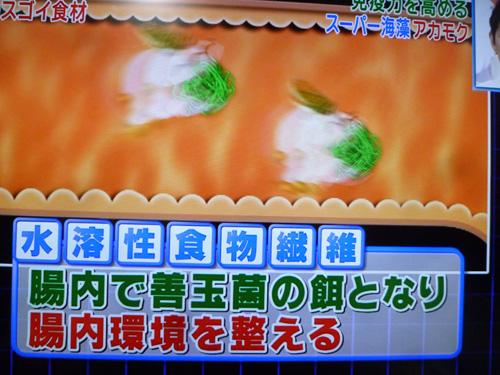 akamoku-02.jpg