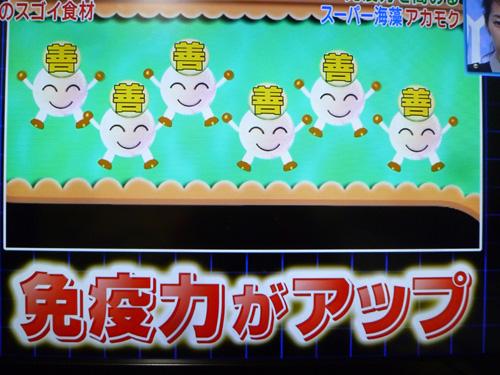 akamoku-03.jpg
