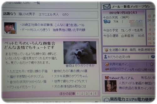 DSC05838_20120703232431.jpg