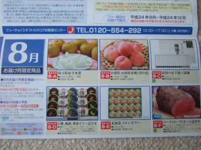 20120630日本エスリード2