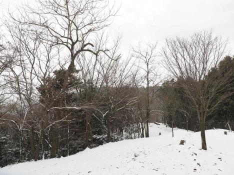 憩いの森公園140119