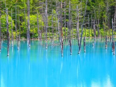 111.青い池