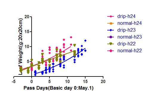 pass days driph22-24