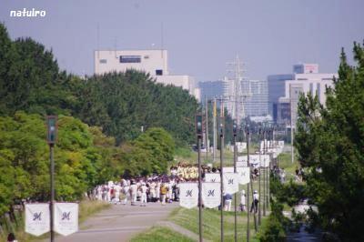 2012-07-11.jpg
