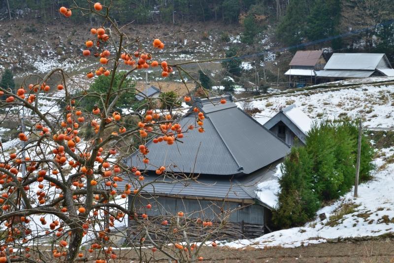 山村雪景色4 (香川県まんのう町)